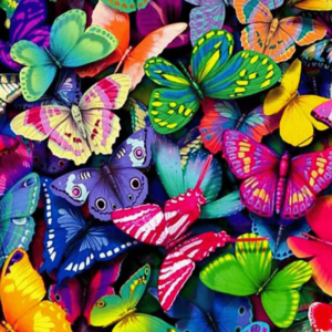 Colorful Butterflies Paint By Number Kit - Paint By Number Shop