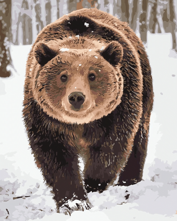 Snow Bear Paint By Numbers Kit - Paint By Numbers Kit Shop