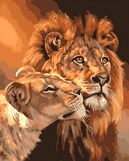 Lions together Paint By Number Kit - Paint By Numbers Kit Shop