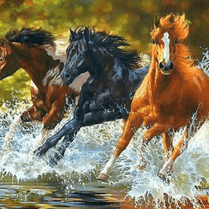Paint by Numbers Kit Horses Running - Paint By Numbers Kit Shop
