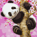 Paint By Number Kit Kids Cherry Panda - Paint By Number Shop