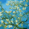 Paint by Numbers Kit Van Gogh Flower Apricot - Paint By Numbers Kit Shop