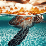 Paint by Numbers Kit Diving Turtle - Paint By Numbers Kit Shop