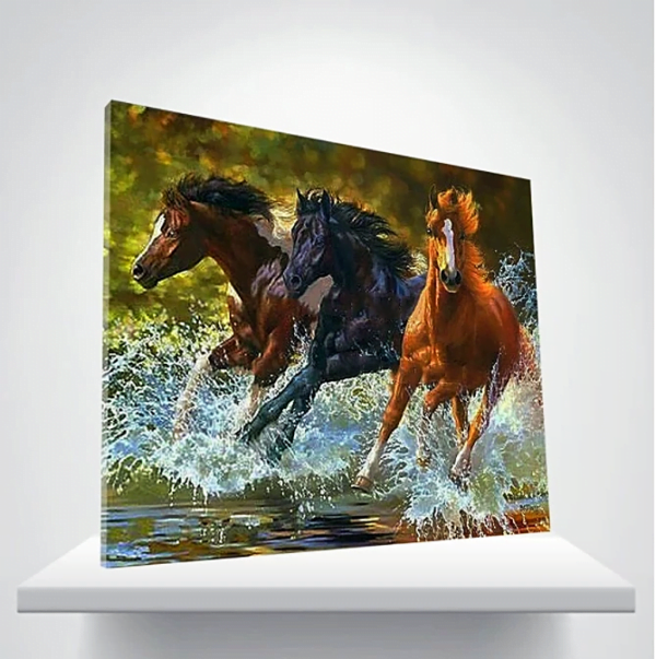 Paint by numbers kits horse