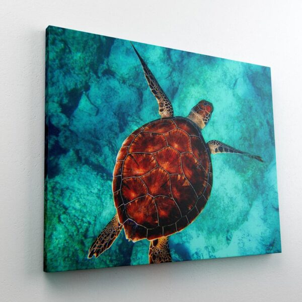 Paint by Numbers Kit Turtle Sea - Paint By Numbers Kit Shop