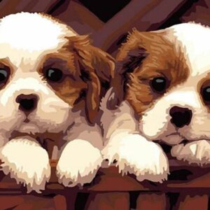 Two Puppies Paint by Numbers Kit - Paint By Number Shop